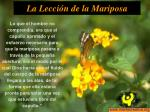 la lecci n de la mariposa6
