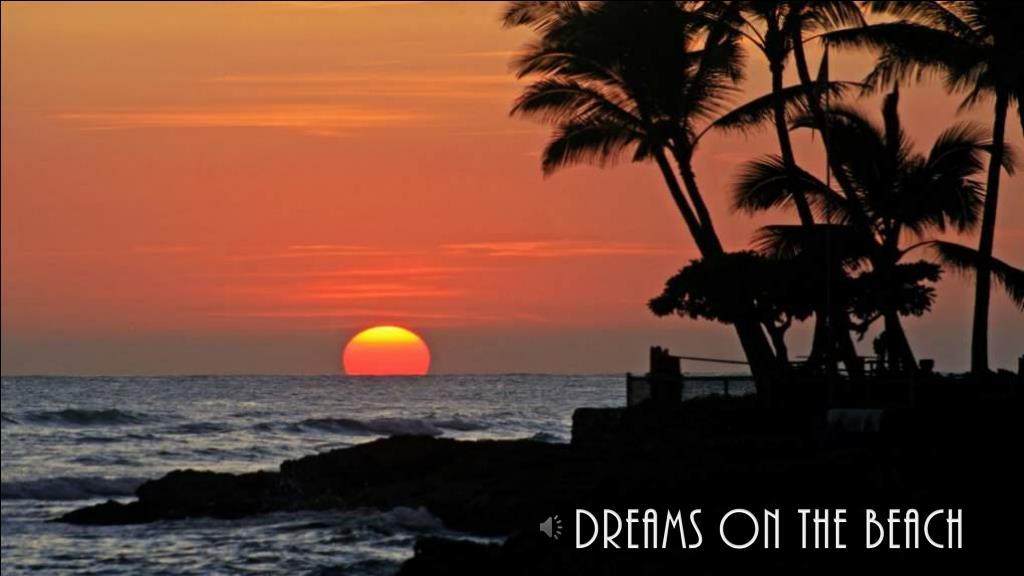 DREAMS ON THE BEACH