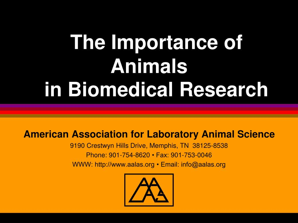 the importance of animals in biomedical research l.