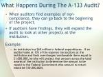 what happens during the a 133 audit