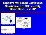 experimental setup continuous measurement of cbf velocity blood gases and bp13