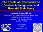 the effects of hypercapnia on cerebral autoregulation and neonatal brain injury