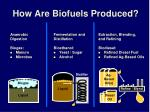 how are biofuels produced