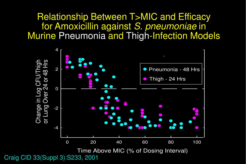 Relationship Between T>MIC and Efficacy