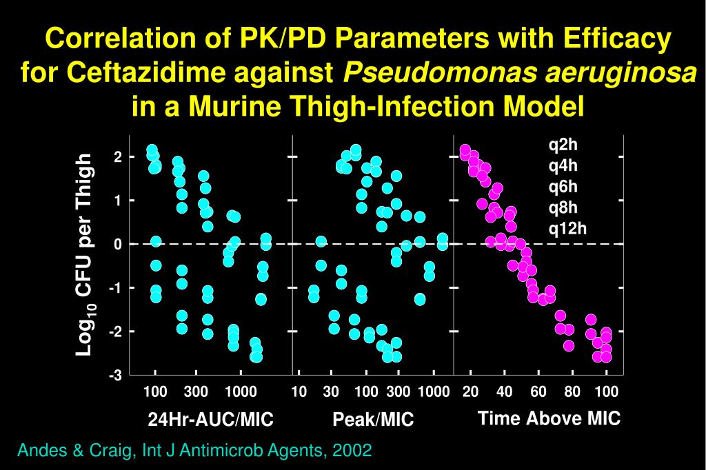 Correlation of PK/PD Parameters with Efficacy
