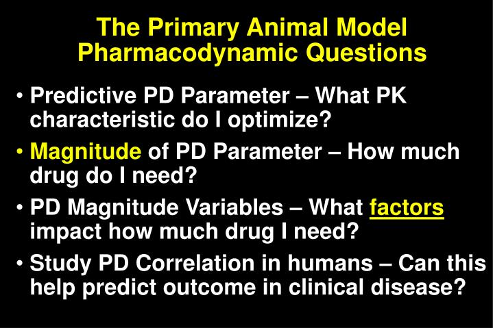 The primary animal model pharmacodynamic questions