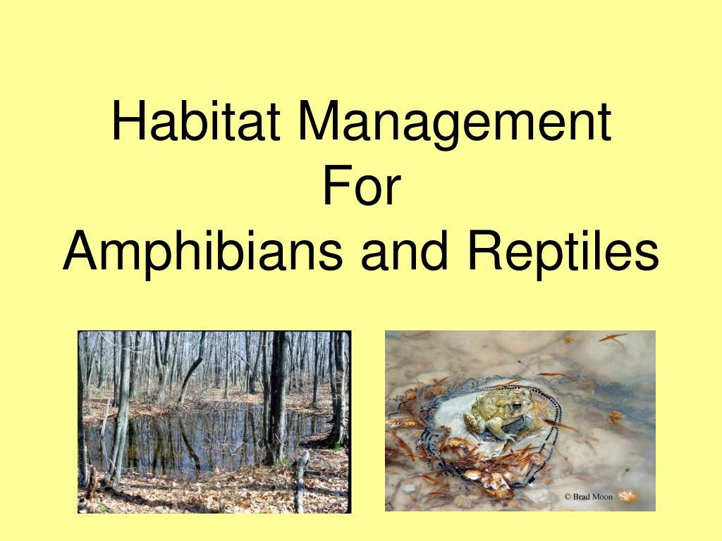 habitat management for amphibians and reptiles l.