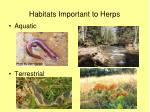 habitats important to herps