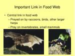 important link in food web11