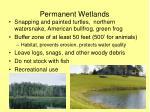 permanent wetlands