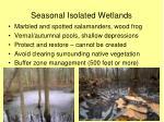 seasonal isolated wetlands