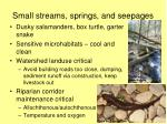 small streams springs and seepages