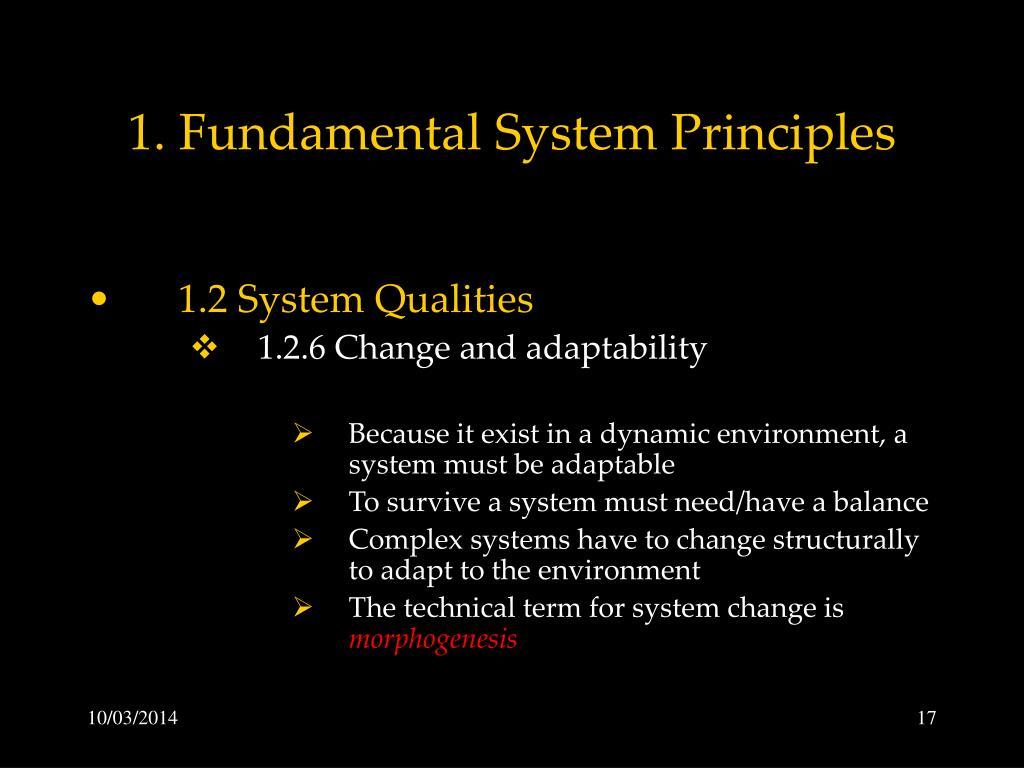 1. Fundamental System Principles