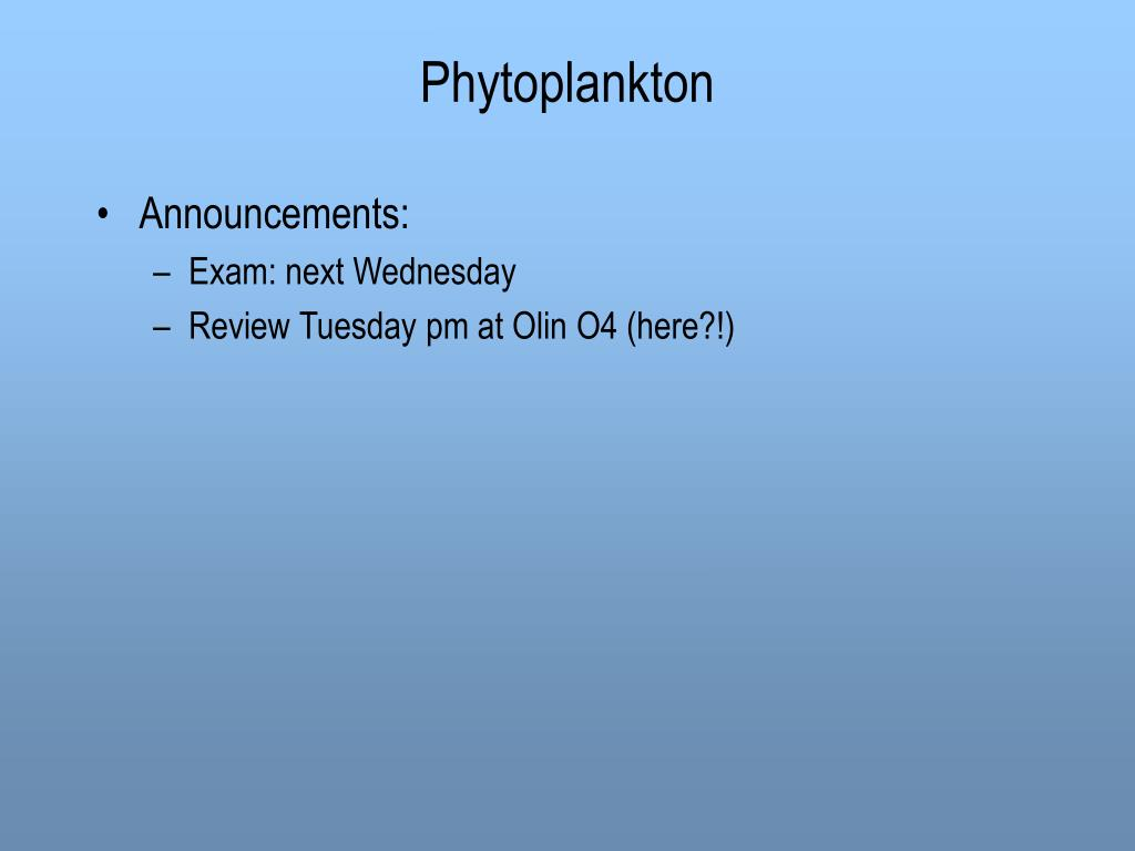 phytoplankton l.