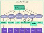 annotation process