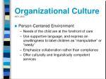 organizational culture neti 200322