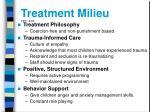 treatment milieu neti 2003
