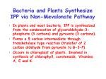 bacteria and plants synthesize ipp via non mevalonate pathway