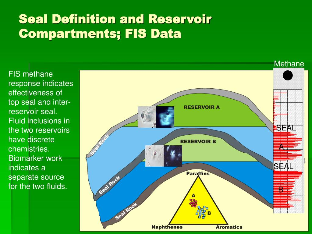 Seal Definition and Reservoir Compartments; FIS Data