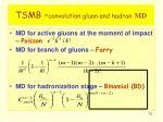 tsmb convolution gluon and hadron md