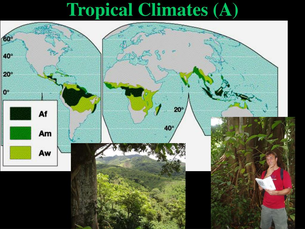 Tropical Climates (A)