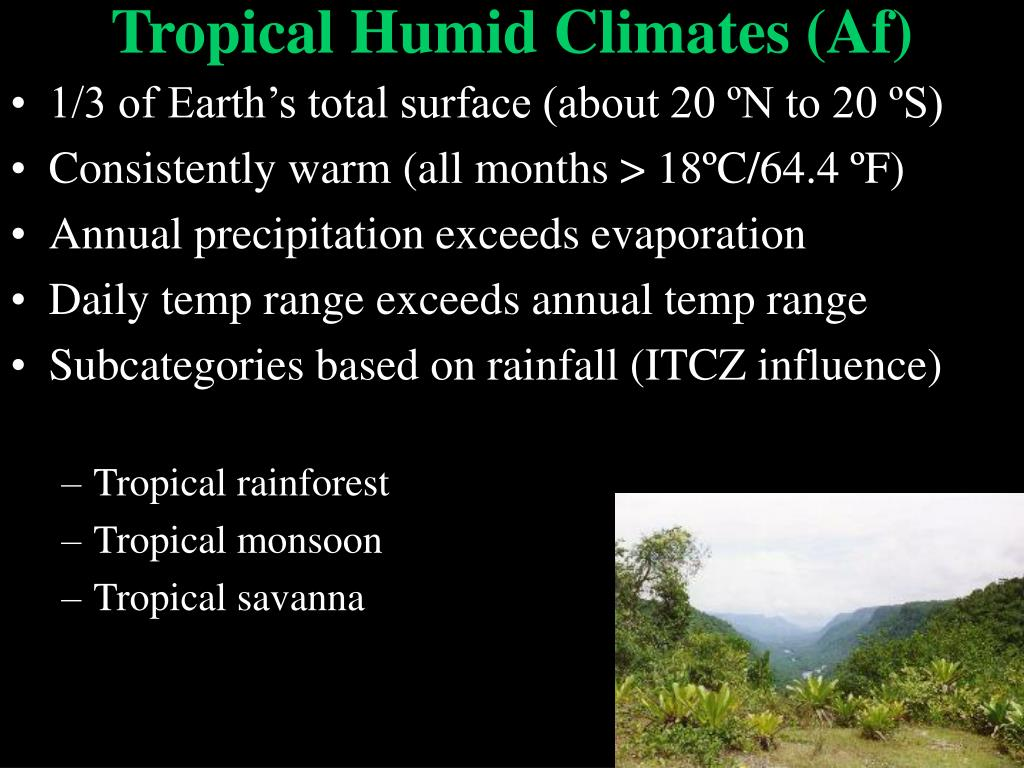 Tropical Humid Climates (Af)