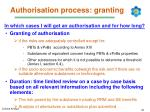 authorisation process granting