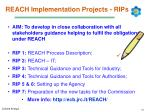 reach implementation projects rips