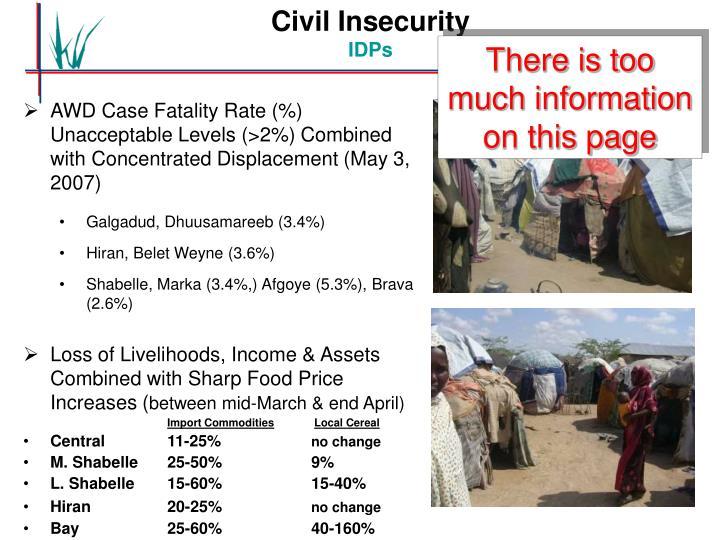 Civil Insecurity