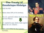 the treaty of gaudalupe hidalgo