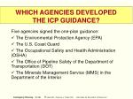 which agencies developed the icp guidance
