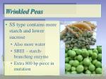 wrinkled peas