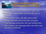 typical multiple criteria uses and economic value
