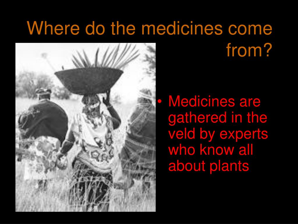 Where do the medicines come          from?