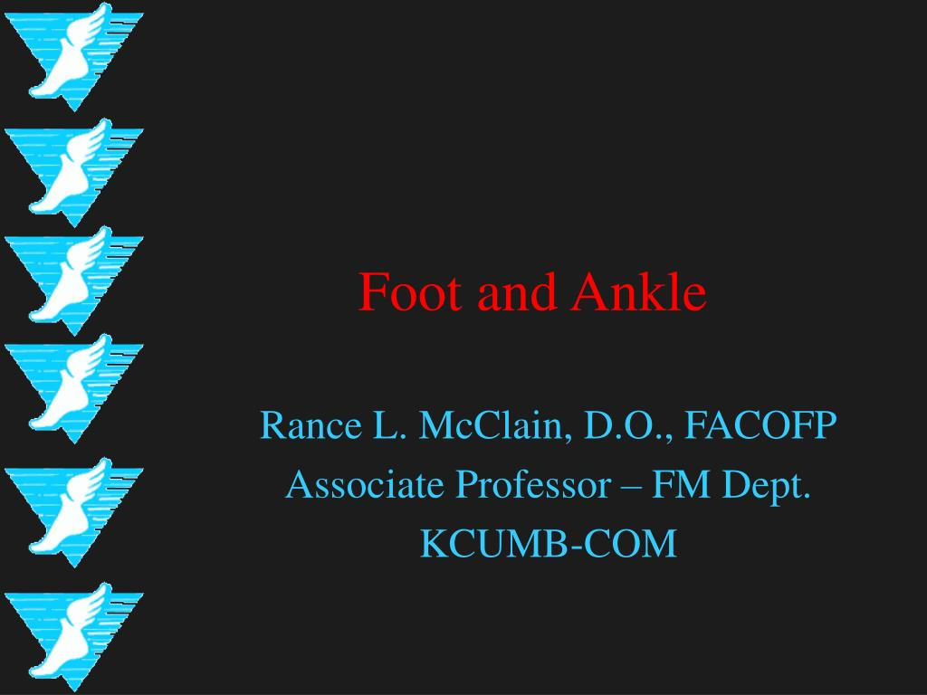foot and ankle l.