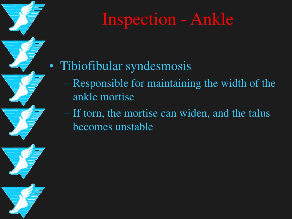 Inspection - Ankle