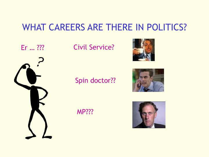 What careers are there in politics