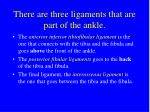 there are three ligaments that are part of the ankle