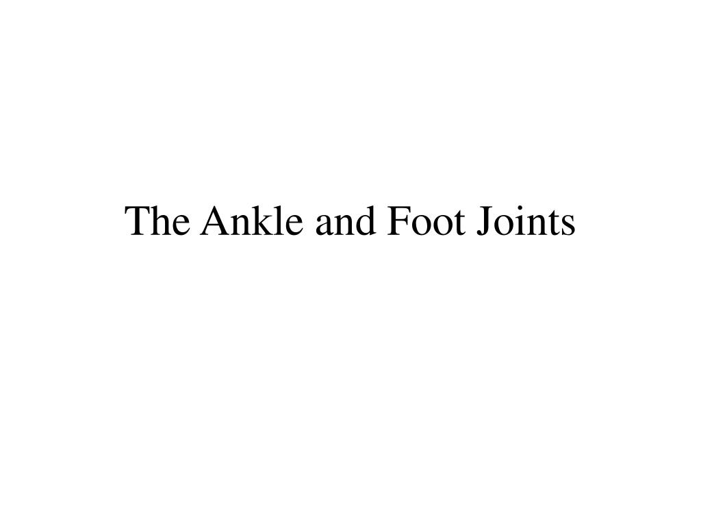 the ankle and foot joints l.