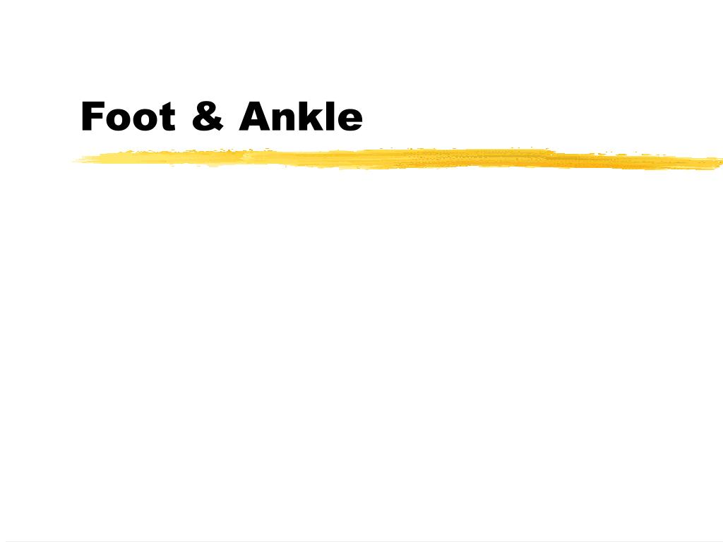 foot ankle l.