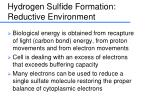 hydrogen sulfide formation reductive environment