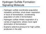 hydrogen sulfide formation signaling molecule
