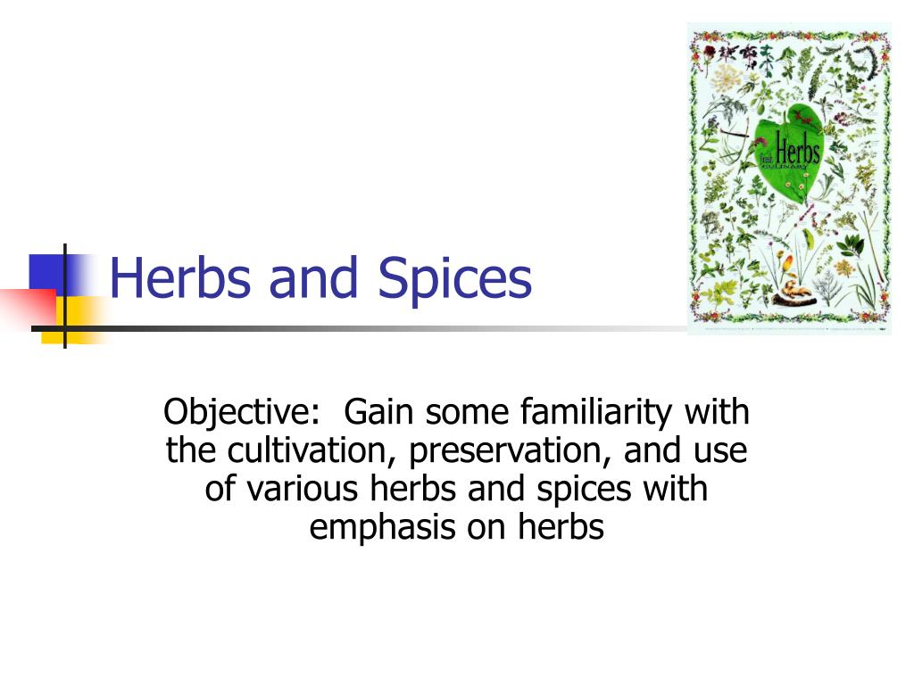 herbs and spices l.