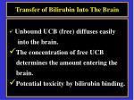 transfer of bilirubin into the brain