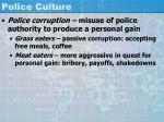 police culture37