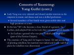 consorts of xuanzong yang guifei cont