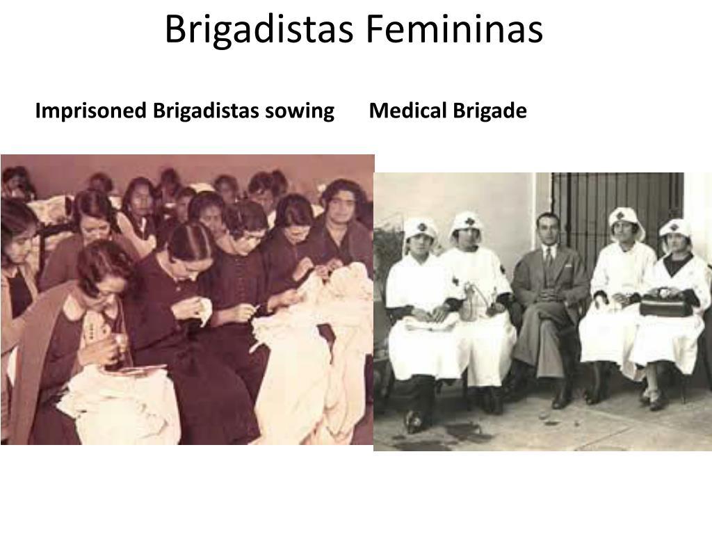 Brigadistas Femininas