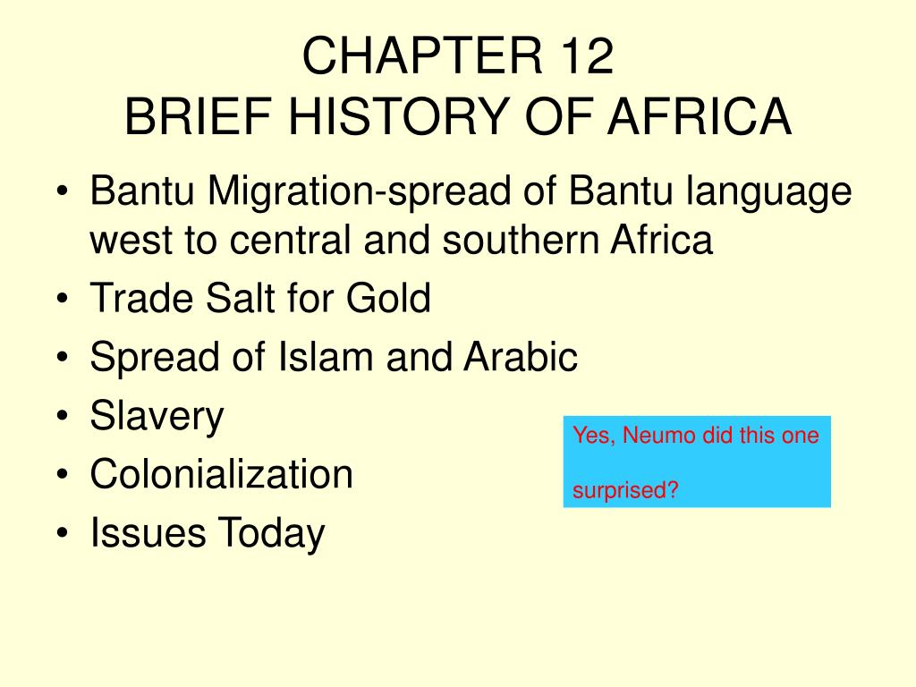 chapter 12 brief history of africa l.