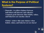 what is the purpose of political systems