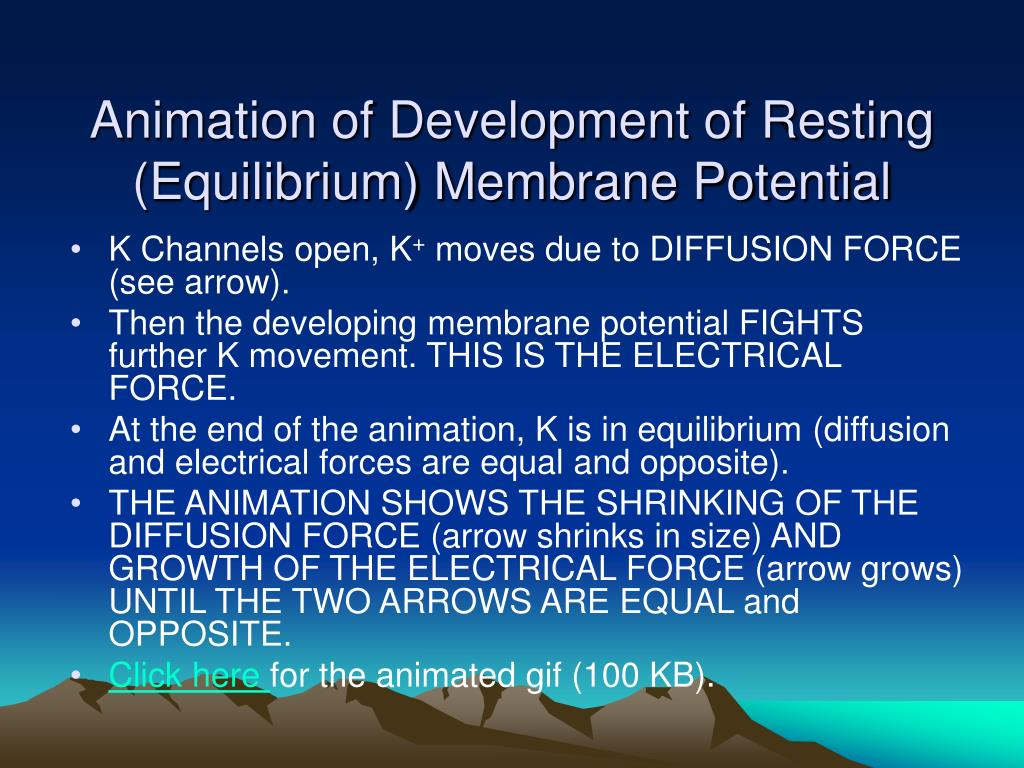 Animation of Development of Resting (Equilibrium) Membrane Potential